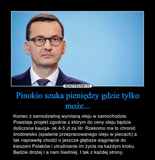 Pinokio szuka pieniędzy gdzie tylko może...