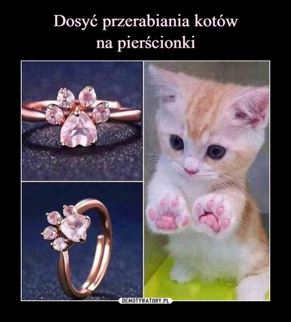 Dosyć przerabiania kotów na pierścionki