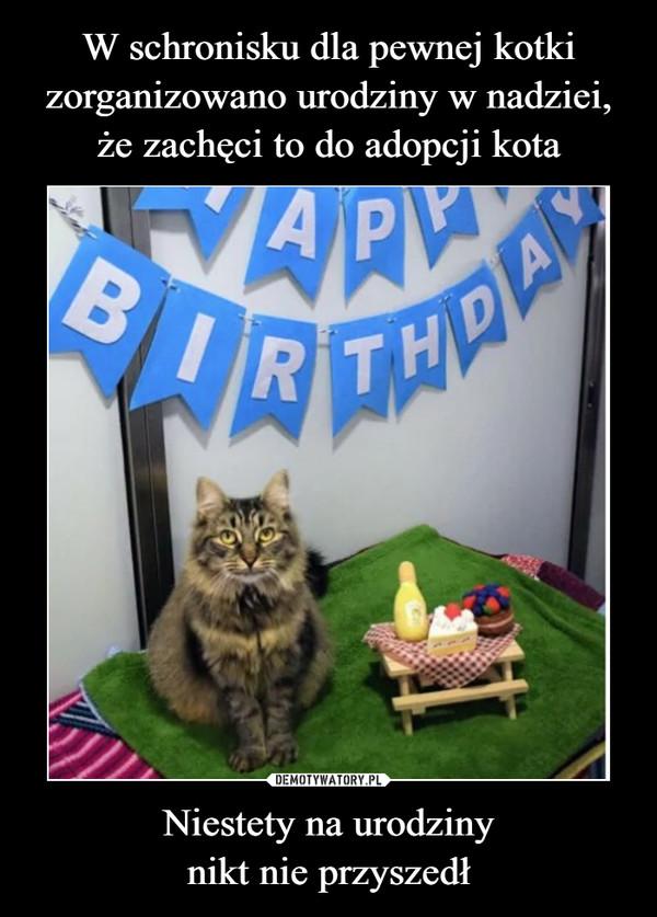 Niestety na urodzinynikt nie przyszedł –