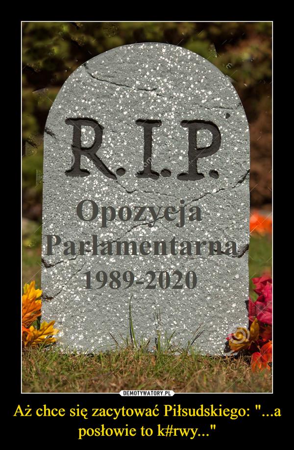 """Aż chce się zacytować Piłsudskiego: """"...a posłowie to k#rwy..."""" –"""