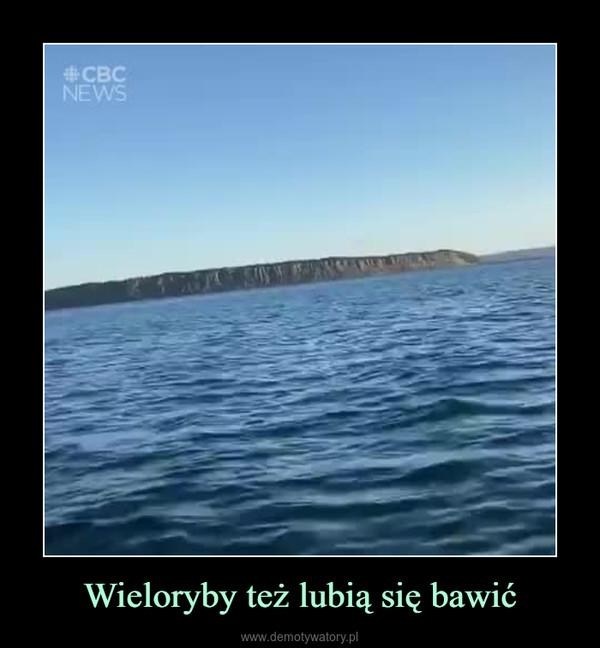 Wieloryby też lubią się bawić –