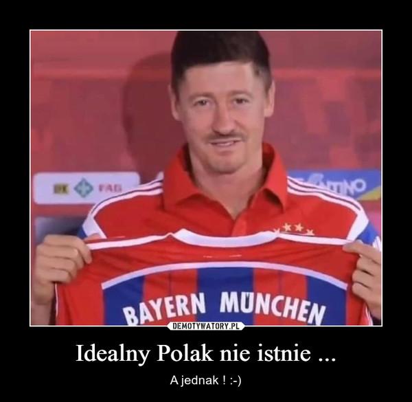 Idealny Polak nie istnie ... – A jednak ! :-)