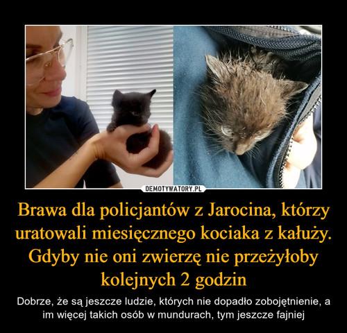 Brawa dla policjantów z Jarocina, którzy uratowali miesięcznego kociaka z kałuży. Gdyby nie oni zwierzę nie przeżyłoby kolejnych 2 godzin