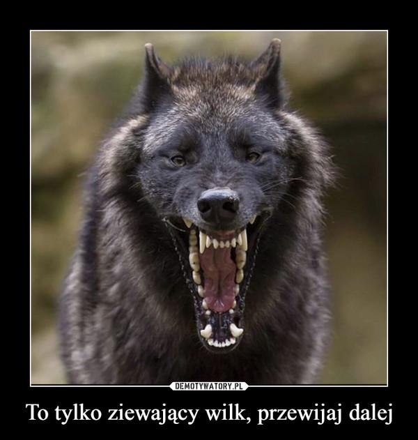 To tylko ziewający wilk, przewijaj dalej –