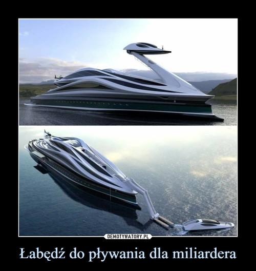 Łabędź do pływania dla miliardera