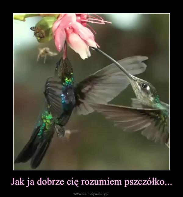 Jak ja dobrze cię rozumiem pszczółko... –