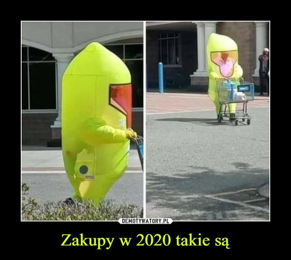 Zakupy w 2020 takie są –
