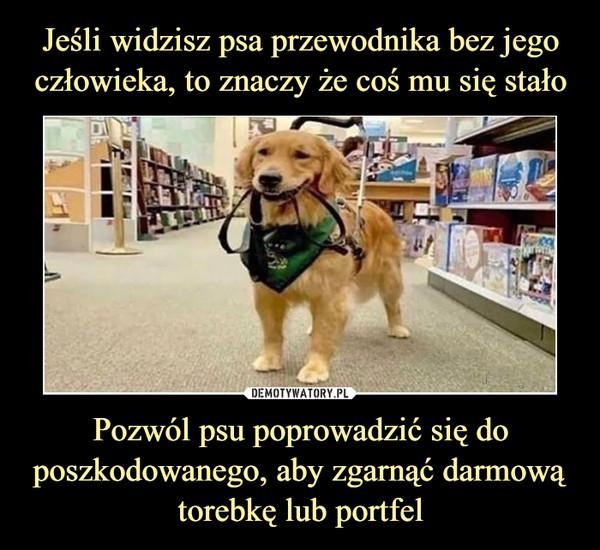 Pozwól psu poprowadzić się do poszkodowanego, aby zgarnąć darmową torebkę lub portfel –