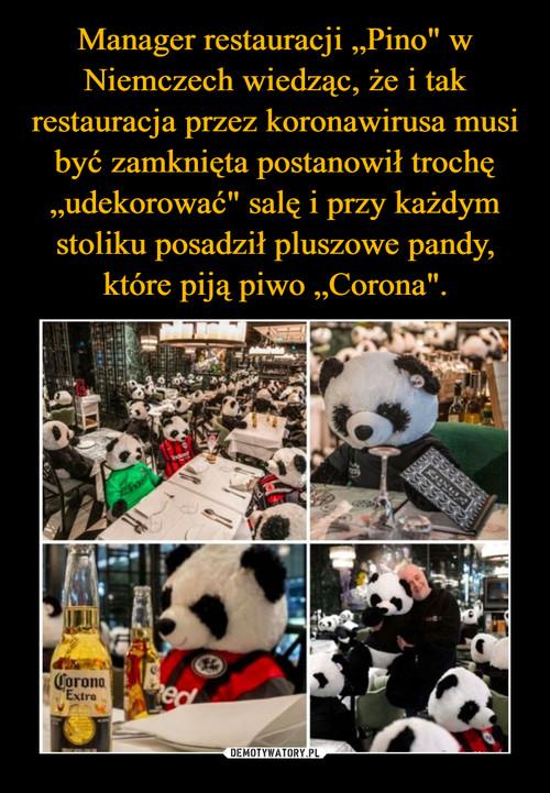 """Manager restauracji """"Pino"""" w Niemczech wiedząc, że i tak restauracja przez koronawirusa musi być zamknięta postanowił trochę """"udekorować"""" salę i przy każdym stoliku posadził pluszowe pandy, które piją piwo """"Corona""""."""