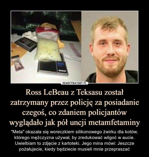 Ross LeBeau z Teksasu został zatrzymany przez policję za posiadanie czegoś, co zdaniem policjantów wyglądało jak pół uncji metamfetaminy