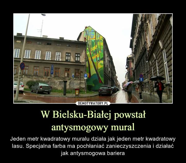 W Bielsku-Białej powstałantysmogowy mural – Jeden metr kwadratowy muralu działa jak jeden metr kwadratowy lasu. Specjalna farba ma pochłaniać zanieczyszczenia i działać jak antysmogowa bariera