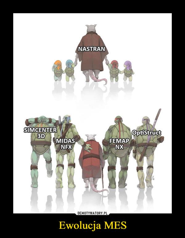 Ewolucja MES –