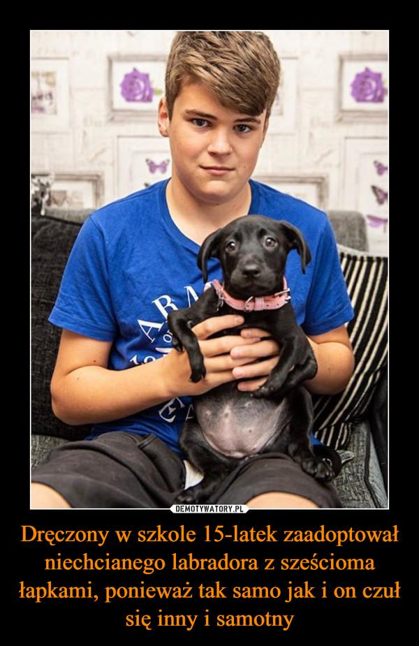 Dręczony w szkole 15-latek zaadoptował niechcianego labradora z sześcioma łapkami, ponieważ tak samo jak i on czuł się inny i samotny –