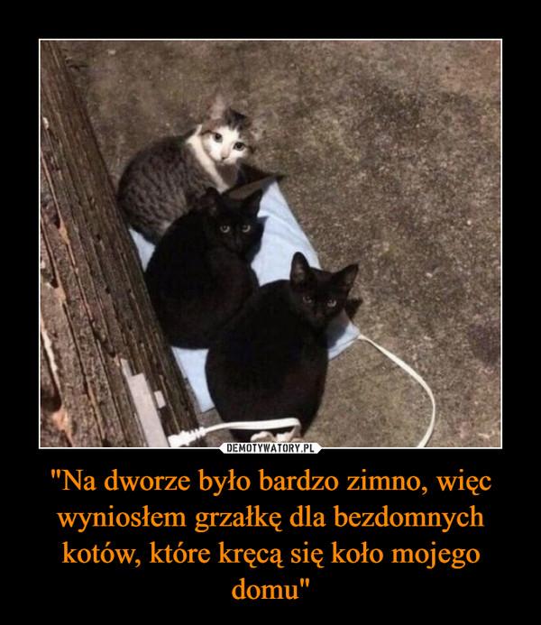 """""""Na dworze było bardzo zimno, więc wyniosłem grzałkę dla bezdomnych kotów, które kręcą się koło mojego domu"""" –"""