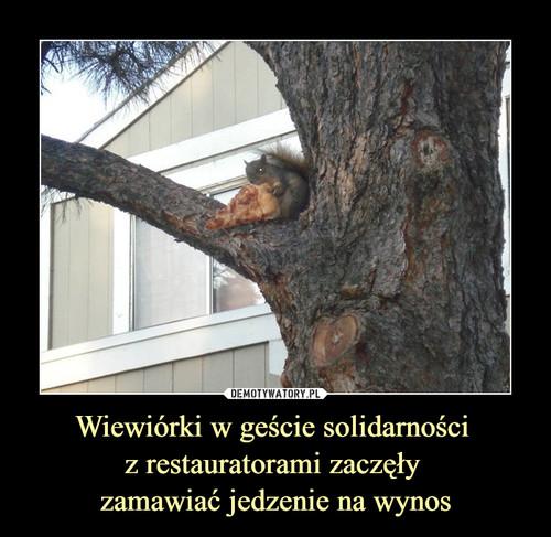Wiewiórki w geście solidarności  z restauratorami zaczęły  zamawiać jedzenie na wynos