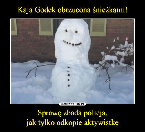 Kaja Godek obrzucona śnieżkami! Sprawę zbada policja, jak tylko odkopie aktywistkę