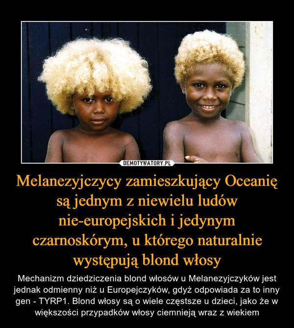 Melanezyjczycy zamieszkujący Oceanię są jednym z niewielu ludów nie-europejskich i jedynym czarnoskórym, u którego naturalnie występują blond włosy – Mechanizm dziedziczenia blond włosów u Melanezyjczyków jest jednak odmienny niż u Europejczyków, gdyż odpowiada za to inny gen - TYRP1. Blond włosy są o wiele częstsze u dzieci, jako że w większości przypadków włosy ciemnieją wraz z wiekiem