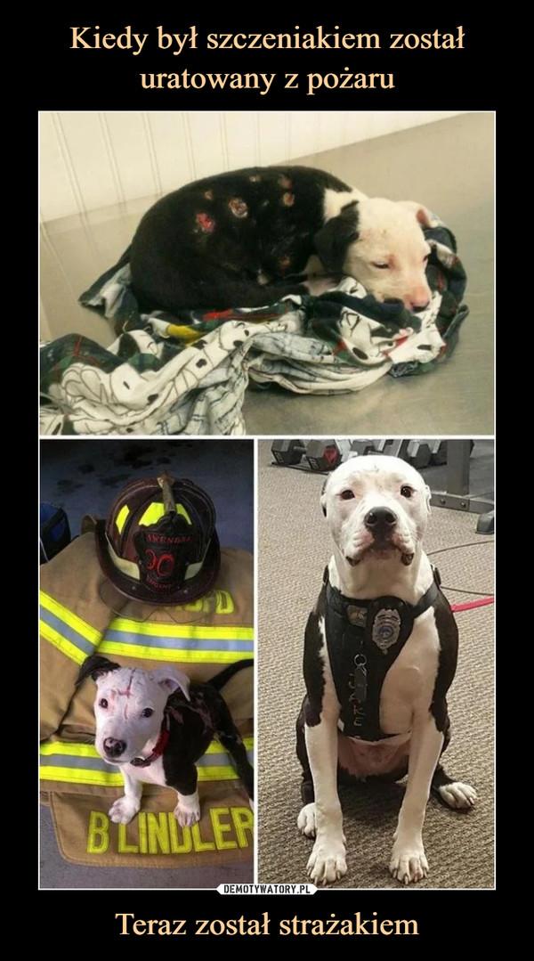 Teraz został strażakiem –