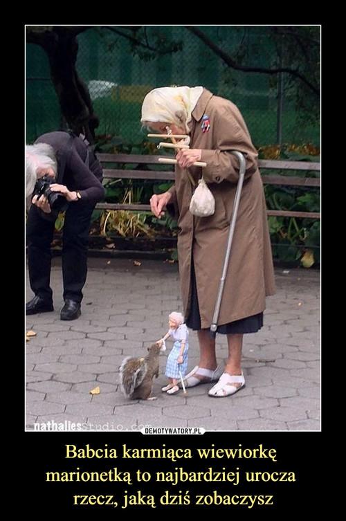 Babcia karmiąca wiewiorkę  marionetką to najbardziej urocza  rzecz, jaką dziś zobaczysz