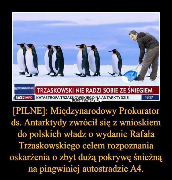 [PILNE]: Międzynarodowy Prokurator ds. Antarktydy zwrócił się z wnioskiem do polskich władz o wydanie Rafała Trzaskowskiego celem rozpoznania oskarżenia o zbyt dużą pokrywę śnieżną na pingwiniej autostradzie A4. –