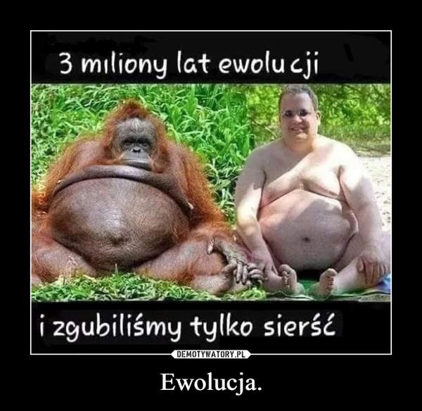 Ewolucja. –