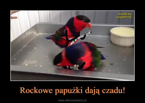 Rockowe papużki dają czadu! –