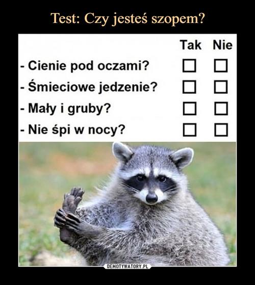 Test: Czy jesteś szopem?