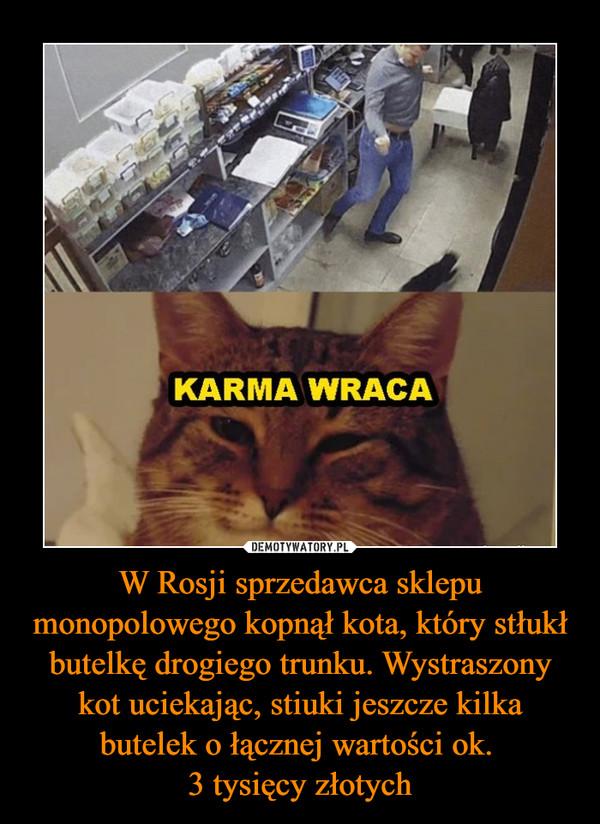 W Rosji sprzedawca sklepu monopolowego kopnął kota, który stłukł butelkę drogiego trunku. Wystraszony kot uciekając, stiuki jeszcze kilka butelek o łącznej wartości ok. 3 tysięcy złotych –