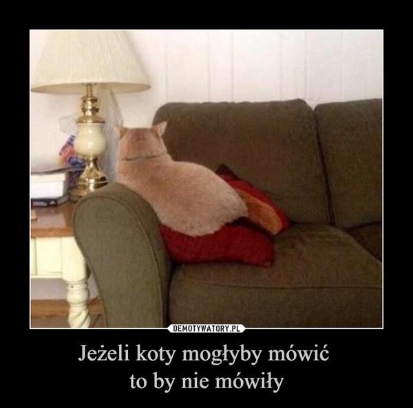 Jeżeli koty mogłyby mówić to by nie mówiły –