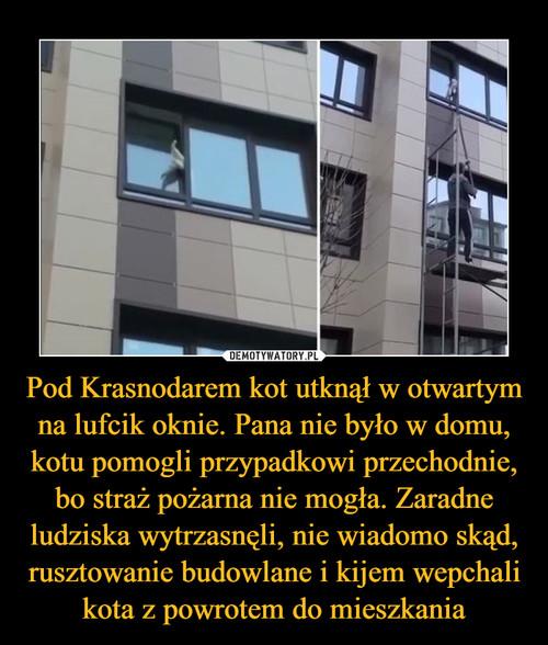 Pod Krasnodarem kot utknął w otwartym na lufcik oknie. Pana nie było w domu, kotu pomogli przypadkowi przechodnie, bo straż pożarna nie mogła. Zaradne ludziska wytrzasnęli, nie wiadomo skąd, rusztowanie budowlane i kijem wepchali kota z powrotem do mieszkania