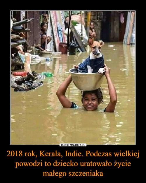 2018 rok, Kerala, Indie. Podczas wielkiej powodzi to dziecko uratowało życie małego szczeniaka