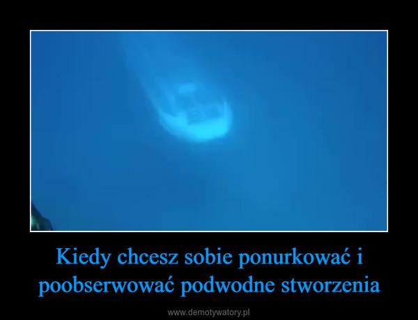 Kiedy chcesz sobie ponurkować i poobserwować podwodne stworzenia –