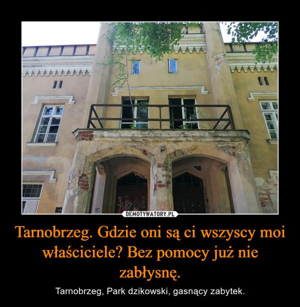 Tarnobrzeg. Gdzie oni są ci wszyscy moi właściciele? Bez pomocy już nie zabłysnę. – Tarnobrzeg, Park dzikowski, gasnący zabytek.