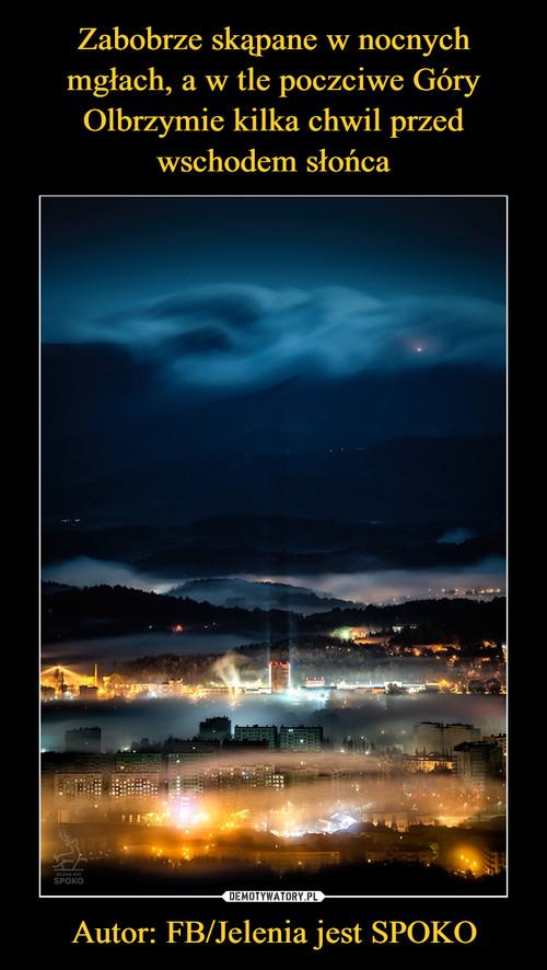 Zabobrze skąpane w nocnych mgłach, a w tle poczciwe Góry Olbrzymie kilka chwil przed wschodem słońca Autor: FB/Jelenia jest SPOKO