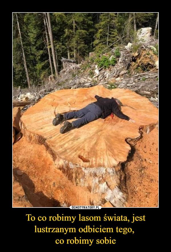 To co robimy lasom świata, jest lustrzanym odbiciem tego, co robimy sobie –