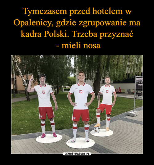 Tymczasem przed hotelem w Opalenicy, gdzie zgrupowanie ma kadra Polski. Trzeba przyznać  - mieli nosa
