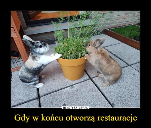 Gdy w końcu otworzą restauracje