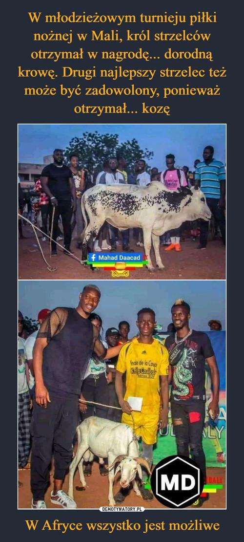 W młodzieżowym turnieju piłki nożnej w Mali, król strzelców otrzymał w nagrodę... dorodną krowę. Drugi najlepszy strzelec też może być zadowolony, ponieważ otrzymał... kozę W Afryce wszystko jest możliwe