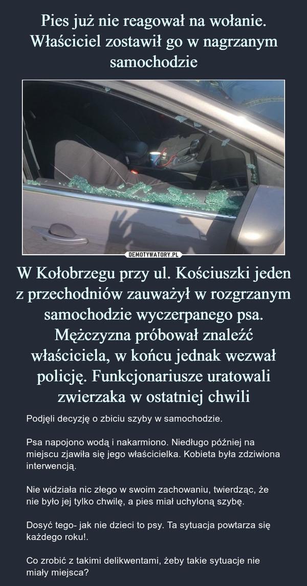 W Kołobrzegu przy ul. Kościuszki jeden z przechodniów zauważył w rozgrzanym samochodzie wyczerpanego psa. Mężczyzna próbował znaleźć właściciela, w końcu jednak wezwał policję. Funkcjonariusze uratowali zwierzaka w ostatniej chwili – Podjęli decyzję o zbiciu szyby w samochodzie.Psa napojono wodą i nakarmiono. Niedługo później na miejscu zjawiła się jego właścicielka. Kobieta była zdziwiona interwencją.Nie widziała nic złego w swoim zachowaniu, twierdząc, że nie było jej tylko chwilę, a pies miał uchyloną szybę.Dosyć tego- jak nie dzieci to psy. Ta sytuacja powtarza się każdego roku!.Co zrobić z takimi delikwentami, żeby takie sytuacje nie miały miejsca?