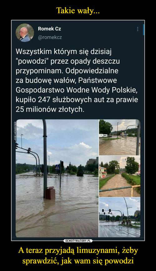 Takie wały... A teraz przyjadą limuzynami, żeby sprawdzić, jak wam się powodzi