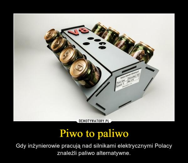 Piwo to paliwo – Gdy inżynierowie pracują nad silnikami elektrycznymi Polacy znaleźli paliwo alternatywne.