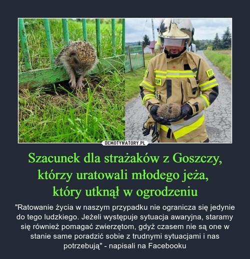 Szacunek dla strażaków z Goszczy, którzy uratowali młodego jeża,  który utknął w ogrodzeniu