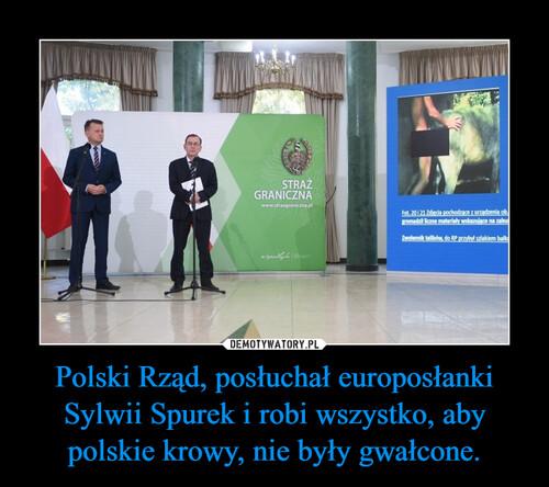 Polski Rząd, posłuchał europosłanki Sylwii Spurek i robi wszystko, aby polskie krowy, nie były gwałcone.