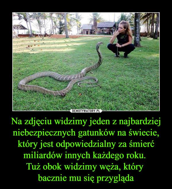 1544437097_zwln92_600.jpg